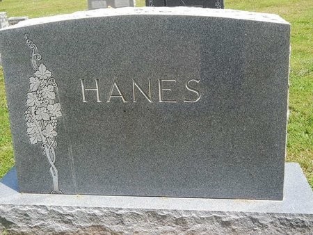 HANES, FAMILY MARKER - Jefferson County, Illinois | FAMILY MARKER HANES - Illinois Gravestone Photos