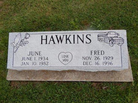 HAWKINS, JUNE - Jefferson County, Illinois | JUNE HAWKINS - Illinois Gravestone Photos