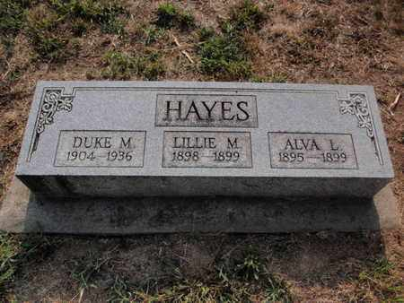 HAYES, DUKE M - Jefferson County, Illinois   DUKE M HAYES - Illinois Gravestone Photos