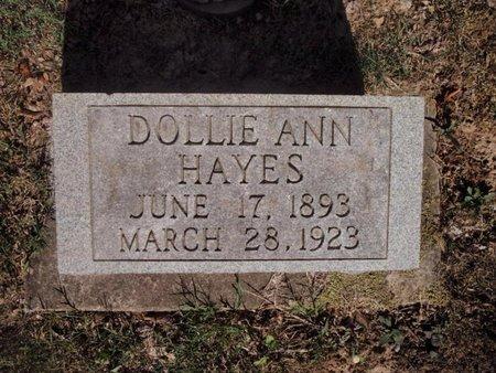 HAYES, DOLLIE ANN - Jefferson County, Illinois | DOLLIE ANN HAYES - Illinois Gravestone Photos