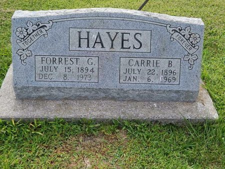HAYES, CARRIE B - Jefferson County, Illinois | CARRIE B HAYES - Illinois Gravestone Photos