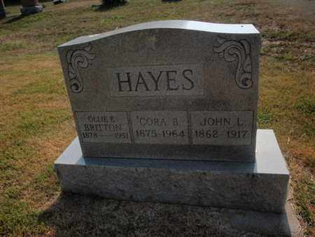 HAYES, JOHN L - Jefferson County, Illinois | JOHN L HAYES - Illinois Gravestone Photos