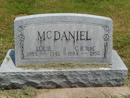 PARKER MCDANIEL, LOUIE E - Jefferson County, Illinois | LOUIE E PARKER MCDANIEL - Illinois Gravestone Photos