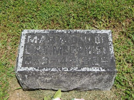 MCDANIEL, MARY - Jefferson County, Illinois | MARY MCDANIEL - Illinois Gravestone Photos