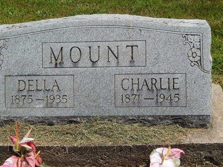 MOUNT, DELLA ELIZABETH - Jefferson County, Illinois | DELLA ELIZABETH MOUNT - Illinois Gravestone Photos