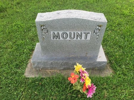 MOUNT, FAMILY MARKER - Jefferson County, Illinois | FAMILY MARKER MOUNT - Illinois Gravestone Photos