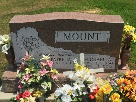 MOUNT, MICHAEL A - Jefferson County, Illinois | MICHAEL A MOUNT - Illinois Gravestone Photos