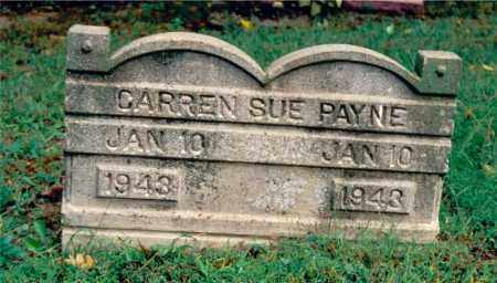 PAYNE, CARREN SUE - Jefferson County, Illinois | CARREN SUE PAYNE - Illinois Gravestone Photos