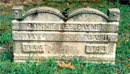 PAYNE, RONNIE LEE - Jefferson County, Illinois   RONNIE LEE PAYNE - Illinois Gravestone Photos