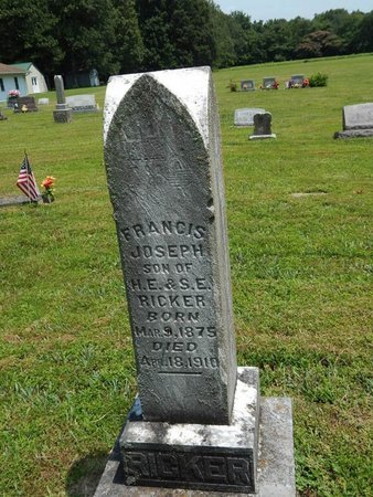 RICKER, FRANCIS JOSEPH - Jefferson County, Illinois | FRANCIS JOSEPH RICKER - Illinois Gravestone Photos