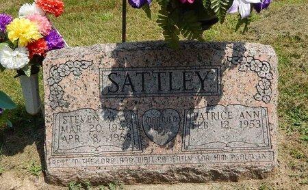 SATTLEY, STEVEN MAX - Jefferson County, Illinois | STEVEN MAX SATTLEY - Illinois Gravestone Photos