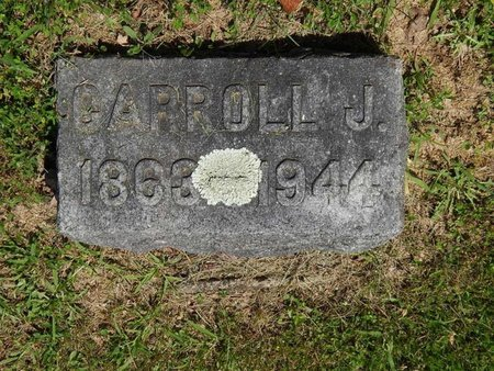 SIMMONS, CARROLL J - Jefferson County, Illinois | CARROLL J SIMMONS - Illinois Gravestone Photos