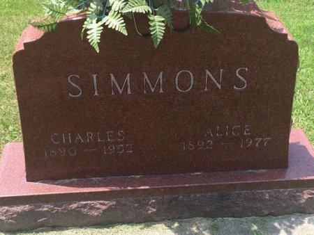 SIMMONS, ALICE - Jefferson County, Illinois | ALICE SIMMONS - Illinois Gravestone Photos