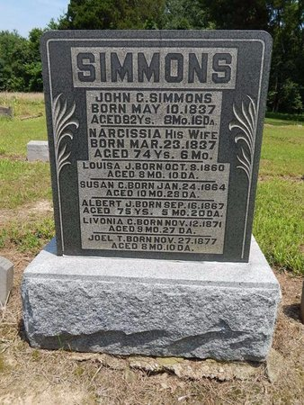 SIMMONS, NARCISSIA - Jefferson County, Illinois | NARCISSIA SIMMONS - Illinois Gravestone Photos
