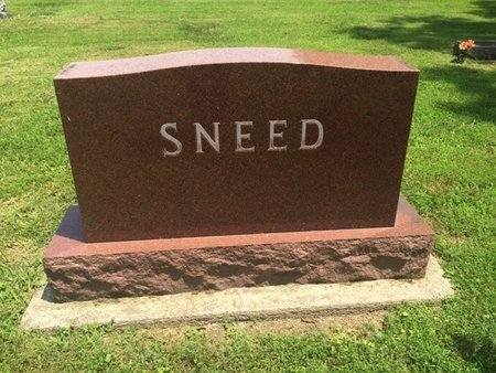 SNEED, FAMILY MARKER - Jefferson County, Illinois | FAMILY MARKER SNEED - Illinois Gravestone Photos