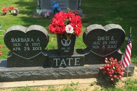 TATE, DAVIS E - Jefferson County, Illinois | DAVIS E TATE - Illinois Gravestone Photos