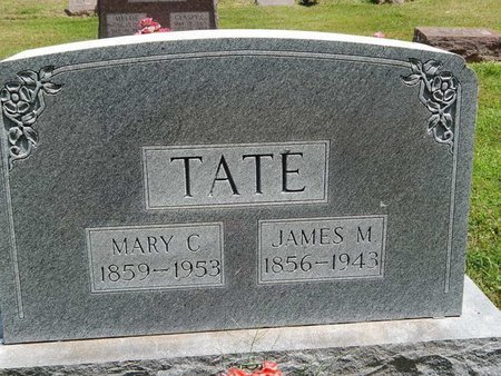 TATE, MARY C - Jefferson County, Illinois | MARY C TATE - Illinois Gravestone Photos