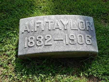 TAYLOR, ALBION F - Jefferson County, Illinois | ALBION F TAYLOR - Illinois Gravestone Photos