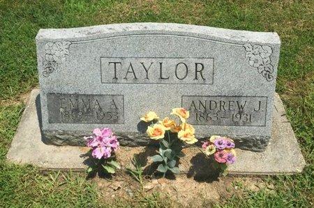 TAYLOR, ANDREW J - Jefferson County, Illinois | ANDREW J TAYLOR - Illinois Gravestone Photos
