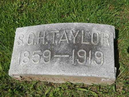 TAYLOR, STEVEN G H - Jefferson County, Illinois | STEVEN G H TAYLOR - Illinois Gravestone Photos