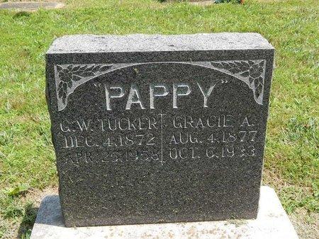 TUCKER, GEORGE W - Jefferson County, Illinois | GEORGE W TUCKER - Illinois Gravestone Photos