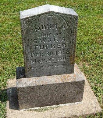 TUCKER, NORA P - Jefferson County, Illinois | NORA P TUCKER - Illinois Gravestone Photos