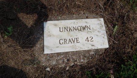 UNKNOWN, GRAVE 42 - Jefferson County, Illinois | GRAVE 42 UNKNOWN - Illinois Gravestone Photos
