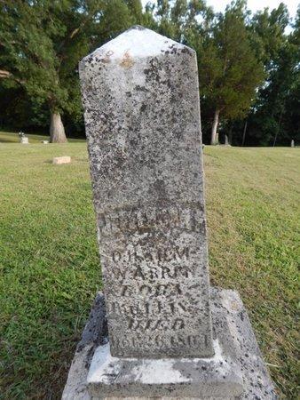 WARREN, JEREMIAH E - Jefferson County, Illinois | JEREMIAH E WARREN - Illinois Gravestone Photos