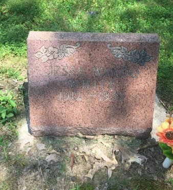 WHITE, JESSE WALDO - Jefferson County, Illinois | JESSE WALDO WHITE - Illinois Gravestone Photos