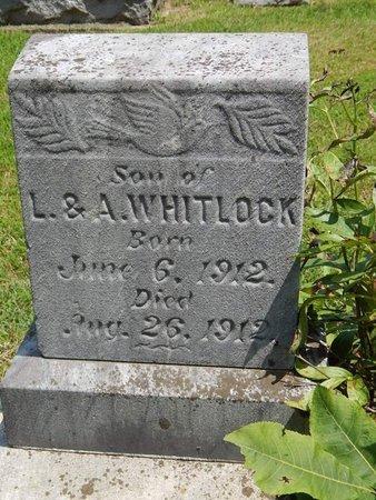 WHITLOCK, TROY - Jefferson County, Illinois | TROY WHITLOCK - Illinois Gravestone Photos