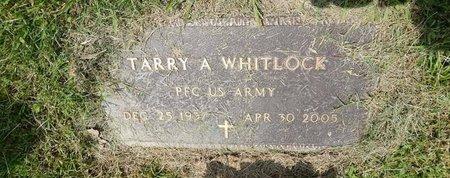 WHITLOCK (VETERAN), TARRY A - Jefferson County, Illinois | TARRY A WHITLOCK (VETERAN) - Illinois Gravestone Photos