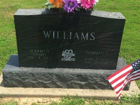 WILLIAMS, NORMAN G - Jefferson County, Illinois | NORMAN G WILLIAMS - Illinois Gravestone Photos