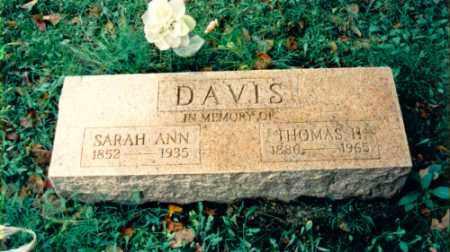 DAVIS, SARAH ANN - Jefferson County, Illinois | SARAH ANN DAVIS - Illinois Gravestone Photos
