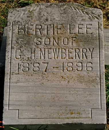 NEWBERRY, BERTIE LEE - Jersey County, Illinois | BERTIE LEE NEWBERRY - Illinois Gravestone Photos