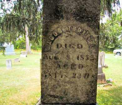 TROXELL, JACOB - Jo Daviess County, Illinois | JACOB TROXELL - Illinois Gravestone Photos
