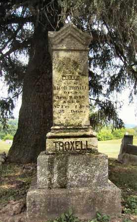 TROXELL, SARAH - Jo Daviess County, Illinois | SARAH TROXELL - Illinois Gravestone Photos