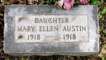 AUSTIN, MARY ELLEN - Kane County, Illinois | MARY ELLEN AUSTIN - Illinois Gravestone Photos