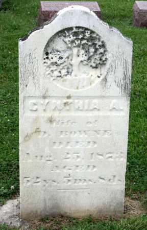 BOWNE, CYNTHIA A. - Kane County, Illinois | CYNTHIA A. BOWNE - Illinois Gravestone Photos