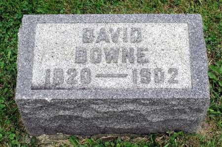 BOWNE, DAVID - Kane County, Illinois | DAVID BOWNE - Illinois Gravestone Photos