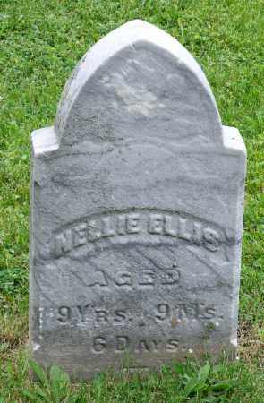ELLIS, NELLIE - Kane County, Illinois | NELLIE ELLIS - Illinois Gravestone Photos
