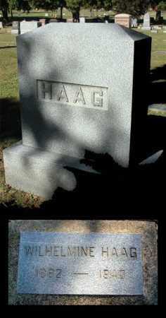 HAAG, WILHELMINE - Kane County, Illinois | WILHELMINE HAAG - Illinois Gravestone Photos