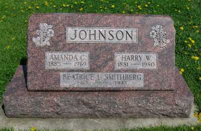 JOHNSON, AMANDA - Kane County, Illinois | AMANDA JOHNSON - Illinois Gravestone Photos