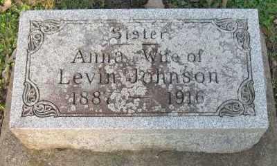 JOHNSON, ANNA - Kane County, Illinois | ANNA JOHNSON - Illinois Gravestone Photos