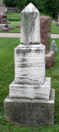 RICE, JAMES C. - Kane County, Illinois   JAMES C. RICE - Illinois Gravestone Photos