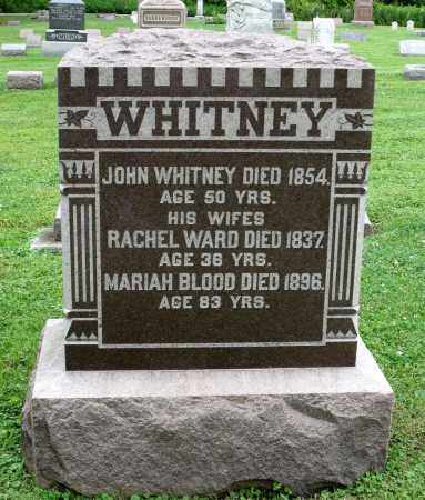 WHITNEY, MARIAH - Kane County, Illinois | MARIAH WHITNEY - Illinois Gravestone Photos