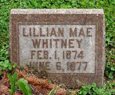 WHITNEY, LILLIAN MAE - Kane County, Illinois | LILLIAN MAE WHITNEY - Illinois Gravestone Photos