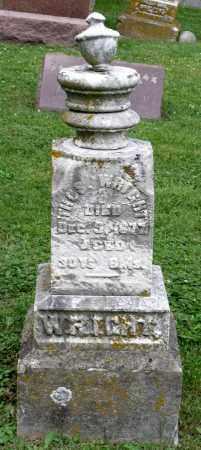 WRIGHT, THOMAS - Kane County, Illinois   THOMAS WRIGHT - Illinois Gravestone Photos