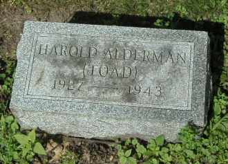 ALDERMAN, HAROLD - Kendall County, Illinois   HAROLD ALDERMAN - Illinois Gravestone Photos