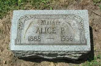 SHOGER, ALICE - Kendall County, Illinois | ALICE SHOGER - Illinois Gravestone Photos