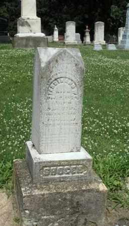 SHOGER, FERDINAND - Kendall County, Illinois | FERDINAND SHOGER - Illinois Gravestone Photos